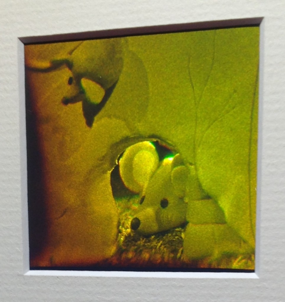 Little Mouse Holograf Detlev Abendroth Ram 13x18 cm 250:-