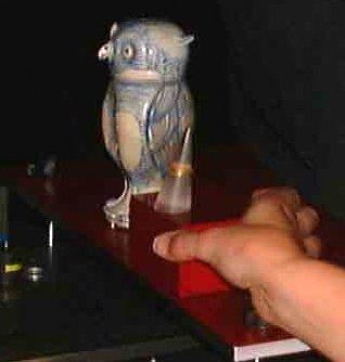 Owl Ring Recording Elisabeth RoylesLowRes
