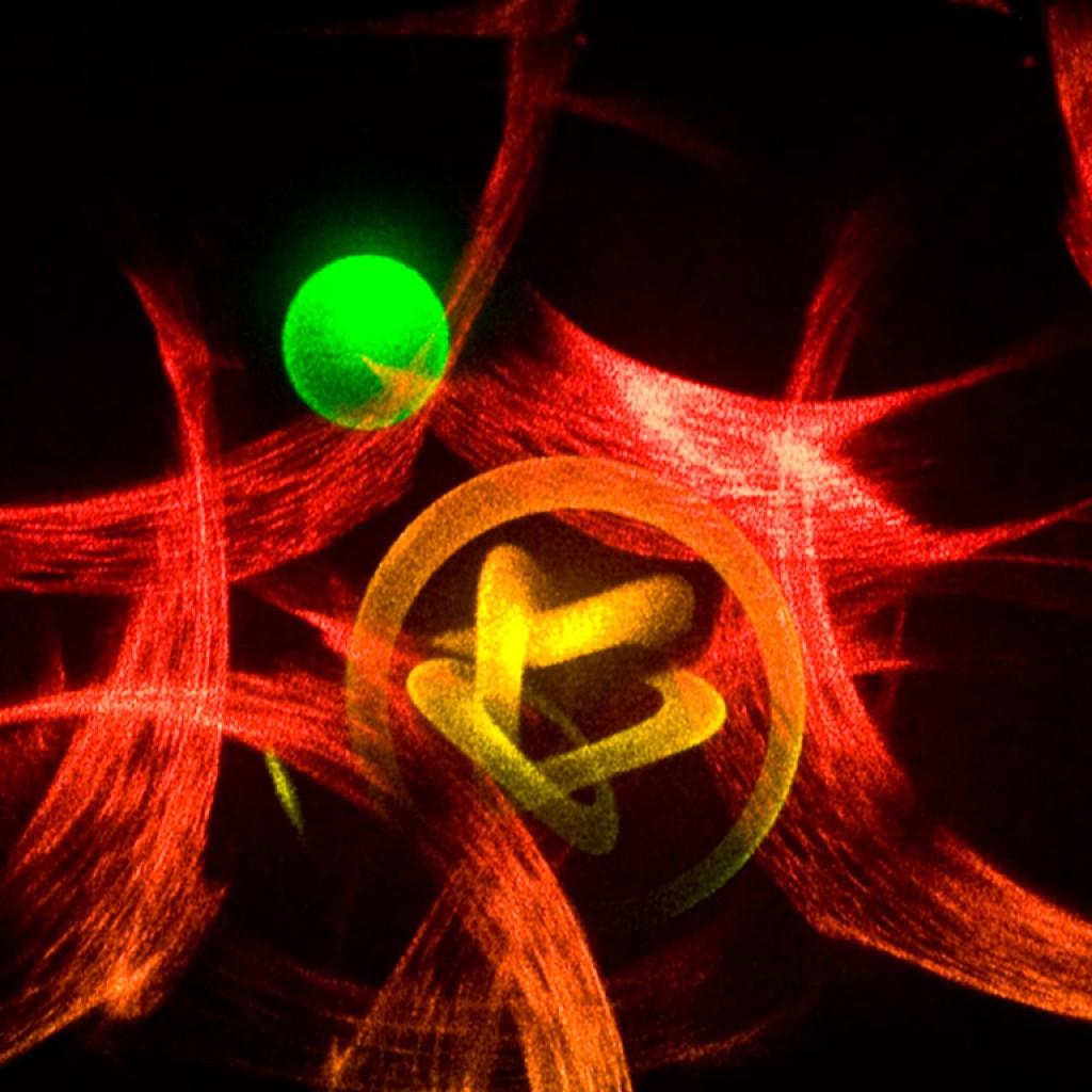 PlanetClaire.jpg Rudie Berkhout transmission hologram