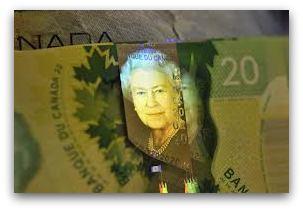 Canada plastsedlar