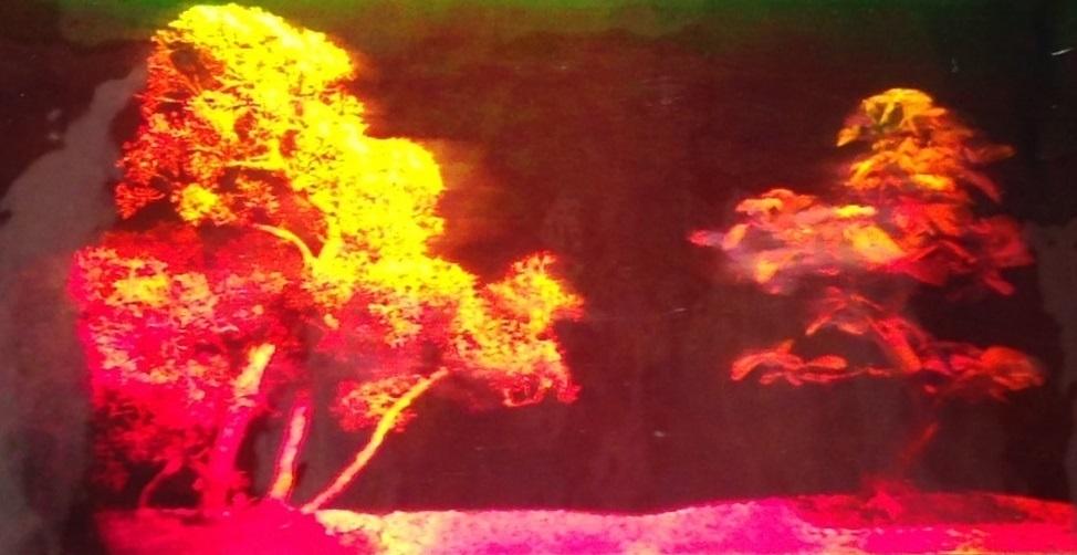 praglat-hologram-trad4